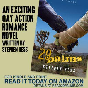 Novel 29 Palms by Steven Hess